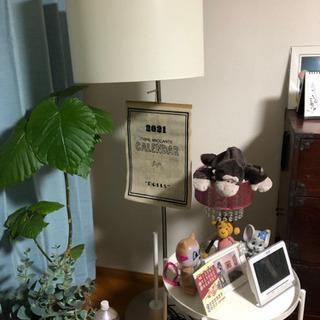 イケヤ ランプ