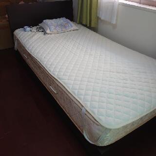 11月4日お渡しできます シングルベッド マットレス綺麗✨✨