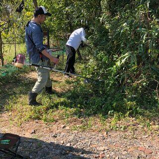 草刈り、草抜き、除草剤の散布などの庭仕事は「便利屋グリーンモア」...