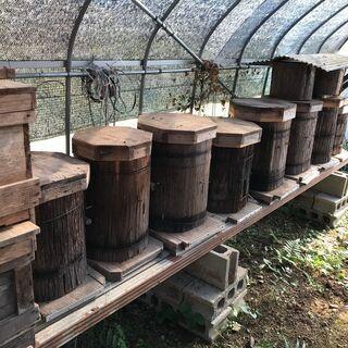 養蜂家の方 巣箱差し上げます【写真わすれました】