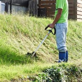 山口県下関市松屋本町の草刈りの見積もりをお願いします!