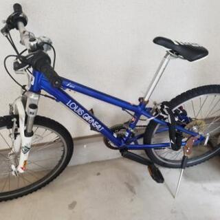 24インチ子供用自転車ルイガノ