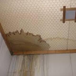 漏水リフォームが無料でできる公的申請手法を現役建築士がわか…