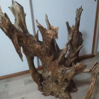流木の置物 - 宇都宮市