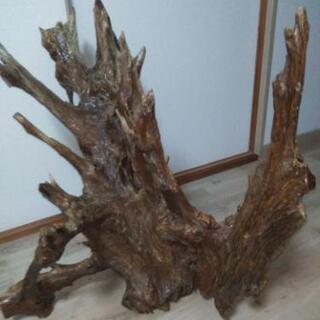 流木の置物 - 家具
