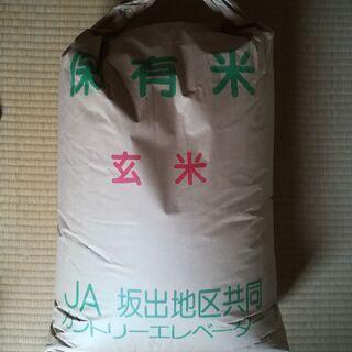 【引き取りのみ】平成31年度「ヒノヒカリ」玄米30kg