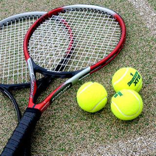 平日テニス / 千葉県柏市 / 年齢、性別、経験は不問です!