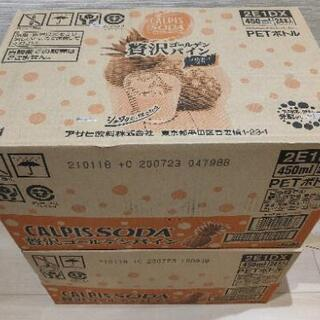 カルピスソーダ贅沢ゴールデンパイン 48本(2箱)