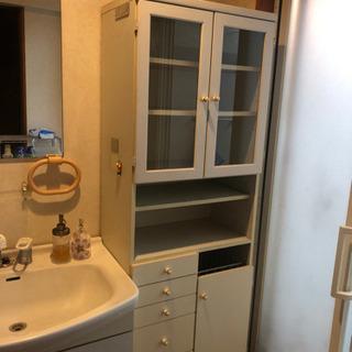 洗面所 ランドリー収納ケース ディノス ホワイト