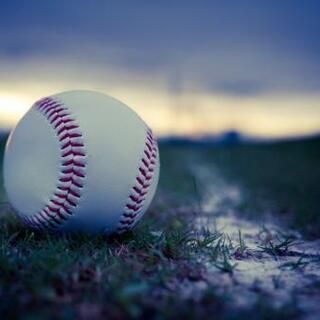 野球の指導(打撃・守備・野球に関する事)