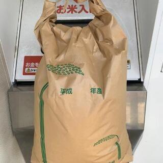 宮崎県串間市産 新米コシヒカリ