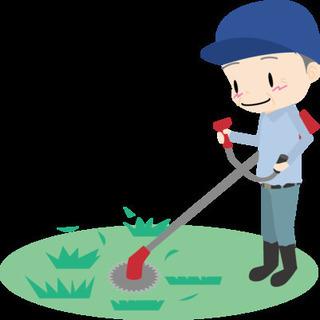 松本市地域の草刈りお受け致します