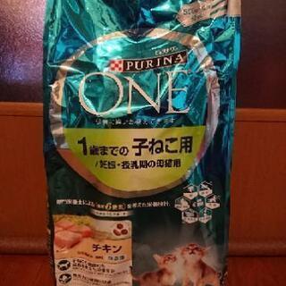 ピュリナ 子猫用 ドライ フード 2.2kg キトン