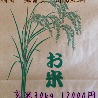 【新米コシヒカリ】特等 有機肥料 R1 減農薬