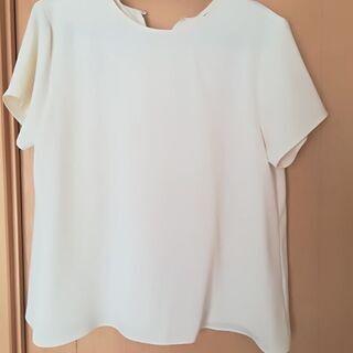 白シャツ 半袖