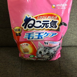 【新品未開封】猫のカリカリ(おまけつき)