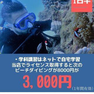 年末年始 沖縄でダイビングライセンス取得!25,000円(追加料...