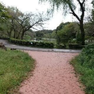 神奈川県立三ツ池公園でパークヨガしませんか?