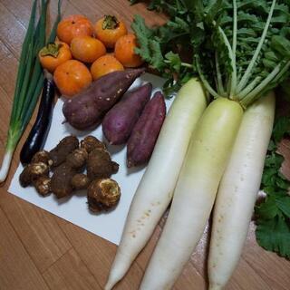 10月のお野菜6点盛り