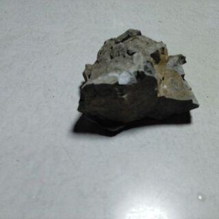 我が家にあった石F