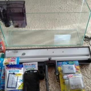 【取引完了】引き取り希望!『値引中』ガラス水槽セット   60×20×30    飼育備品の画像
