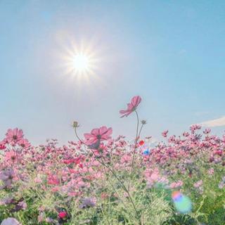 🌸地方→→→大阪✈️🌟✨社会人でも学生の時のように楽しく🌈🙌