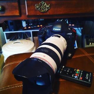 キャノン EOS 1DX + EF28-300mm 超美品 ショ...