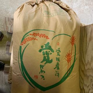 愛媛県産 お米 令和元年 ヒノヒカリ 30kg