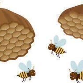 ハチの巣やっつけます!
