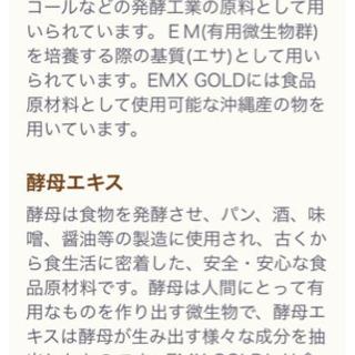 EMXゴールド − 愛知県