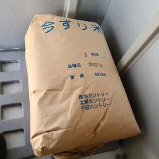 きぬむすめ 令和元年産 30kg 一袋