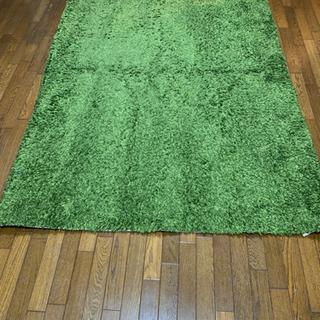 グリーン カーペット ニトリ 160×230