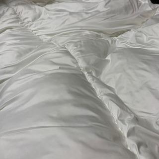 ふんわり中綿の掛け布団(保湿シート入り)  未使用品