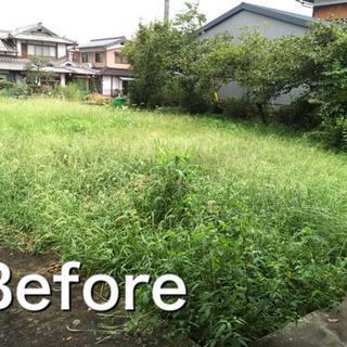 ウッドチップを活用した雑草防止方法
