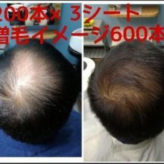 うす毛・細毛でお悩みの方  増毛エクステを知ってますか?