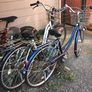 自転車 白の画像