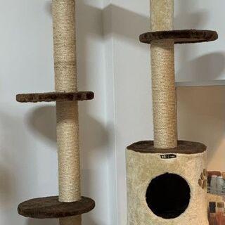 無料キャットタワー(中古)CattyMan