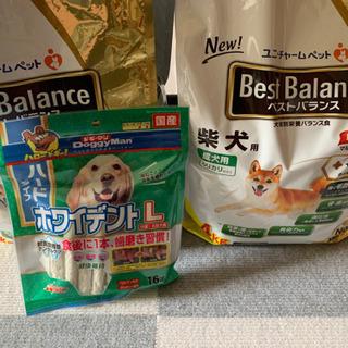 ユニチャームペット ベストバランス 柴犬成犬用の画像