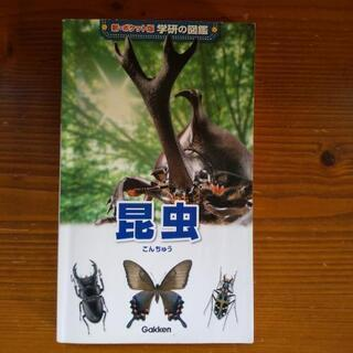 学研の図鑑 ポケット版 昆虫