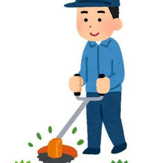 24日火曜日、草集めのアルバイトです!