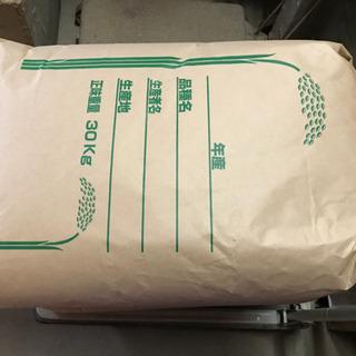 令和2年度産新潟コシヒカリ(精米サービス)2 - 食品
