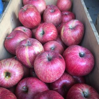 りんごジャム作ってください! 10,000円