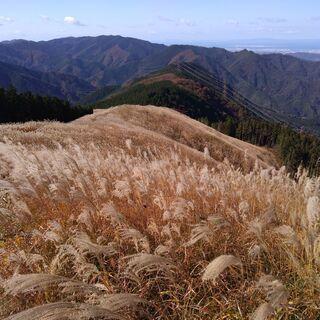 【登山セラピー】健康のために登山・トレッキングを考えている方必見!