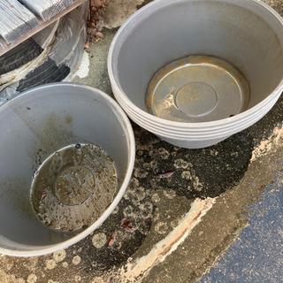 睡蓮鉢 メダカ ビオトープ プランター