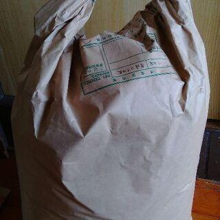 もち麦粉とチクゴイズミ小麦粉のブレンド