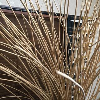 木のモダンなオブジェ インテリア - 家具