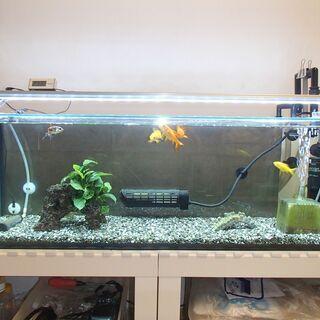 90cm水槽用LEDライト+デジタルタイマー