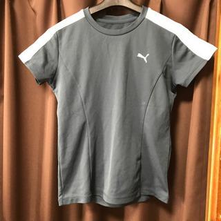 PUMA 半袖シャツ