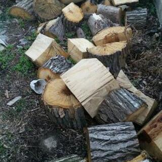 終了◆巨大薪丸太 落葉広葉樹