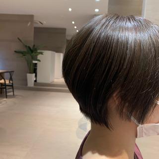 本日19時から!髪質改善✨カラーモデル募集